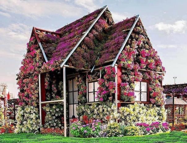 Цветущий домик