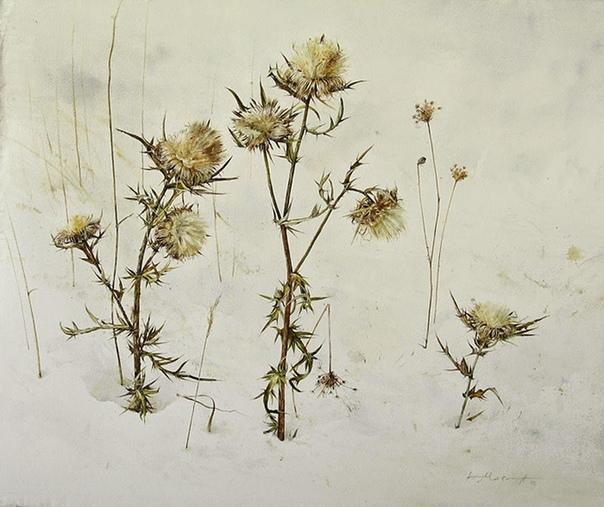 Атанас Мацурев  современный художник-акварелист родом из Болгарии