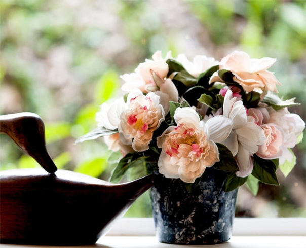 Секреты по уходу за комнатными цветами: 4 важных совета.
