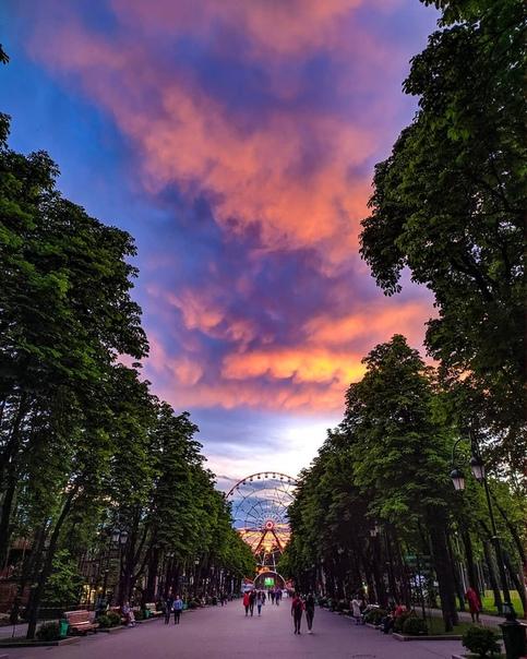 рассветы в парке горького фото эти красавицы