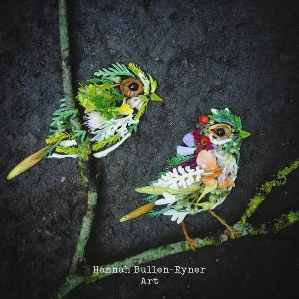 Художница Ханна Буллен-Райнер подчеркивает, как с вниманием к деталям можно создавать потрясающие портреты наших пернатых друзей Она складывает веточки, листья, лепестки цветов и ягоды в